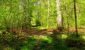 Trail Walk LONGPONT - en forêt de Retz_45_Longpont_la Pierre Fortiere_AR - Photo 194