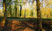 Trail Walk LONGPONT - en forêt de Retz_45_Longpont_la Pierre Fortiere_AR - Photo 6