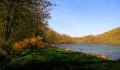 Trail Walk LONGPONT - en forêt de Retz_45_Longpont_la Pierre Fortiere_AR - Photo 205