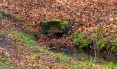 Trail Walk LONGPONT - en forêt de Retz_45_Longpont_la Pierre Fortiere_AR - Photo 50
