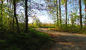 Trail Walk LONGPONT - en forêt de Retz_45_Longpont_la Pierre Fortiere_AR - Photo 87