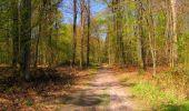 Trail Walk LONGPONT - en forêt de Retz_45_Longpont_la Pierre Fortiere_AR - Photo 179