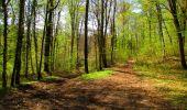 Trail Walk LONGPONT - en forêt de Retz_45_Longpont_la Pierre Fortiere_AR - Photo 164