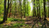 Trail Walk LONGPONT - en forêt de Retz_45_Longpont_la Pierre Fortiere_AR - Photo 175