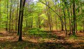 Trail Walk LONGPONT - en forêt de Retz_45_Longpont_la Pierre Fortiere_AR - Photo 170