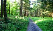 Trail Walk LONGPONT - en forêt de Retz_45_Longpont_la Pierre Fortiere_AR - Photo 13