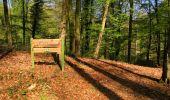 Trail Walk LONGPONT - en forêt de Retz_45_Longpont_la Pierre Fortiere_AR - Photo 93
