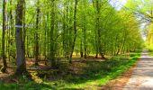 Trail Walk LONGPONT - en forêt de Retz_45_Longpont_la Pierre Fortiere_AR - Photo 174