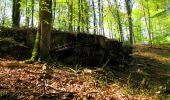 Trail Walk LONGPONT - en forêt de Retz_45_Longpont_la Pierre Fortiere_AR - Photo 109