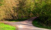 Trail Walk LONGPONT - en forêt de Retz_45_Longpont_la Pierre Fortiere_AR - Photo 46