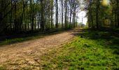 Trail Walk LONGPONT - en forêt de Retz_45_Longpont_la Pierre Fortiere_AR - Photo 68