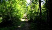 Trail Walk LONGPONT - en forêt de Retz_45_Longpont_la Pierre Fortiere_AR - Photo 123