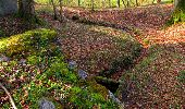Trail Walk LONGPONT - en forêt de Retz_45_Longpont_la Pierre Fortiere_AR - Photo 51