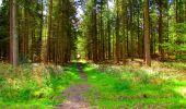 Trail Walk LONGPONT - en forêt de Retz_45_Longpont_la Pierre Fortiere_AR - Photo 17