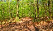 Trail Walk LONGPONT - en forêt de Retz_45_Longpont_la Pierre Fortiere_AR - Photo 160