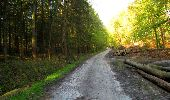 Trail Walk LONGPONT - en forêt de Retz_45_Longpont_la Pierre Fortiere_AR - Photo 24