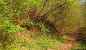 Trail Walk LONGPONT - en forêt de Retz_45_Longpont_la Pierre Fortiere_AR - Photo 153