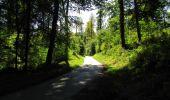 Trail Walk LONGPONT - en forêt de Retz_45_Longpont_la Pierre Fortiere_AR - Photo 124