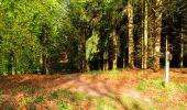 Trail Walk LONGPONT - en forêt de Retz_45_Longpont_la Pierre Fortiere_AR - Photo 27