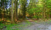 Trail Walk LONGPONT - en forêt de Retz_45_Longpont_la Pierre Fortiere_AR - Photo 23