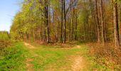 Trail Walk LONGPONT - en forêt de Retz_45_Longpont_la Pierre Fortiere_AR - Photo 188