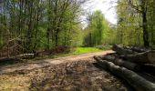 Trail Walk LONGPONT - en forêt de Retz_45_Longpont_la Pierre Fortiere_AR - Photo 133
