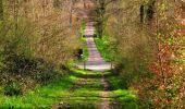 Trail Walk LONGPONT - en forêt de Retz_45_Longpont_la Pierre Fortiere_AR - Photo 65