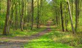 Trail Walk LONGPONT - en forêt de Retz_45_Longpont_la Pierre Fortiere_AR - Photo 33