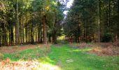 Trail Walk LONGPONT - en forêt de Retz_45_Longpont_la Pierre Fortiere_AR - Photo 26