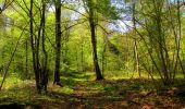 Trail Walk LONGPONT - en forêt de Retz_45_Longpont_la Pierre Fortiere_AR - Photo 193