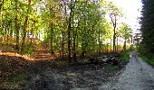 Trail Walk LONGPONT - en forêt de Retz_45_Longpont_la Pierre Fortiere_AR - Photo 21