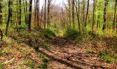 Trail Walk LONGPONT - en forêt de Retz_45_Longpont_la Pierre Fortiere_AR - Photo 162