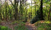 Trail Walk LONGPONT - en forêt de Retz_45_Longpont_la Pierre Fortiere_AR - Photo 29