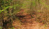 Trail Walk LONGPONT - en forêt de Retz_45_Longpont_la Pierre Fortiere_AR - Photo 156