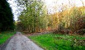 Trail Walk LONGPONT - en forêt de Retz_45_Longpont_la Pierre Fortiere_AR - Photo 16