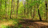 Trail Walk LONGPONT - en forêt de Retz_45_Longpont_la Pierre Fortiere_AR - Photo 168