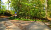 Trail Walk LONGPONT - en forêt de Retz_45_Longpont_la Pierre Fortiere_AR - Photo 92