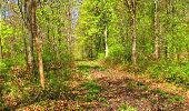 Trail Walk LONGPONT - en forêt de Retz_45_Longpont_la Pierre Fortiere_AR - Photo 167
