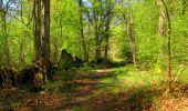 Trail Walk LONGPONT - en forêt de Retz_45_Longpont_la Pierre Fortiere_AR - Photo 213