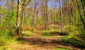 Trail Walk LONGPONT - en forêt de Retz_45_Longpont_la Pierre Fortiere_AR - Photo 158