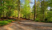 Trail Walk LONGPONT - en forêt de Retz_45_Longpont_la Pierre Fortiere_AR - Photo 91