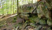Trail Walk LONGPONT - en forêt de Retz_45_Longpont_la Pierre Fortiere_AR - Photo 101