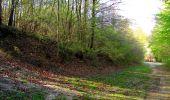 Trail Walk LONGPONT - en forêt de Retz_45_Longpont_la Pierre Fortiere_AR - Photo 45