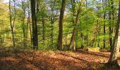 Trail Walk LONGPONT - en forêt de Retz_45_Longpont_la Pierre Fortiere_AR - Photo 97