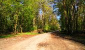 Trail Walk LONGPONT - en forêt de Retz_45_Longpont_la Pierre Fortiere_AR - Photo 34