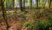 Trail Walk LONGPONT - en forêt de Retz_45_Longpont_la Pierre Fortiere_AR - Photo 203