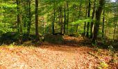 Trail Walk LONGPONT - en forêt de Retz_45_Longpont_la Pierre Fortiere_AR - Photo 112