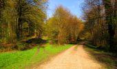 Trail Walk LONGPONT - en forêt de Retz_45_Longpont_la Pierre Fortiere_AR - Photo 70