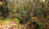 Trail Walk LONGPONT - en forêt de Retz_45_Longpont_la Pierre Fortiere_AR - Photo 30