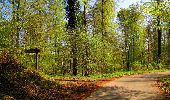 Trail Walk LONGPONT - en forêt de Retz_45_Longpont_la Pierre Fortiere_AR - Photo 96